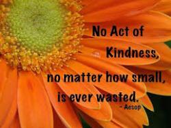 Kindness matters transform